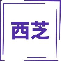 上海西芝矿机有限公司